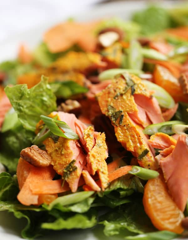 close up of large salmon flake on salad with scallions