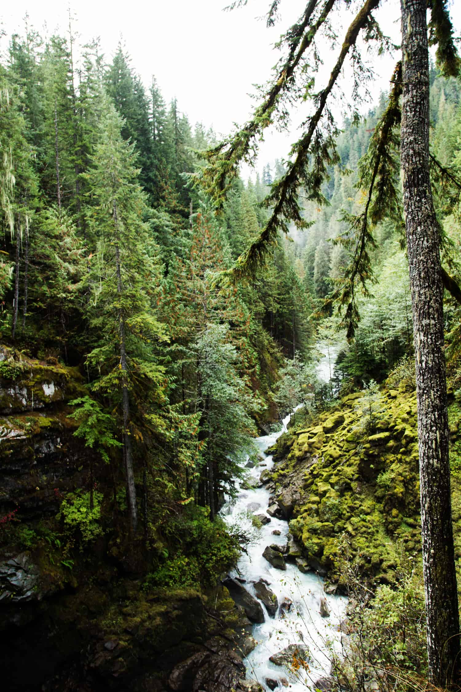 Nooksack Falls meets Wells Creek on it's way down the Nooksack River Valley #BorntoShred #ShredtheDay #collectivebias #ad