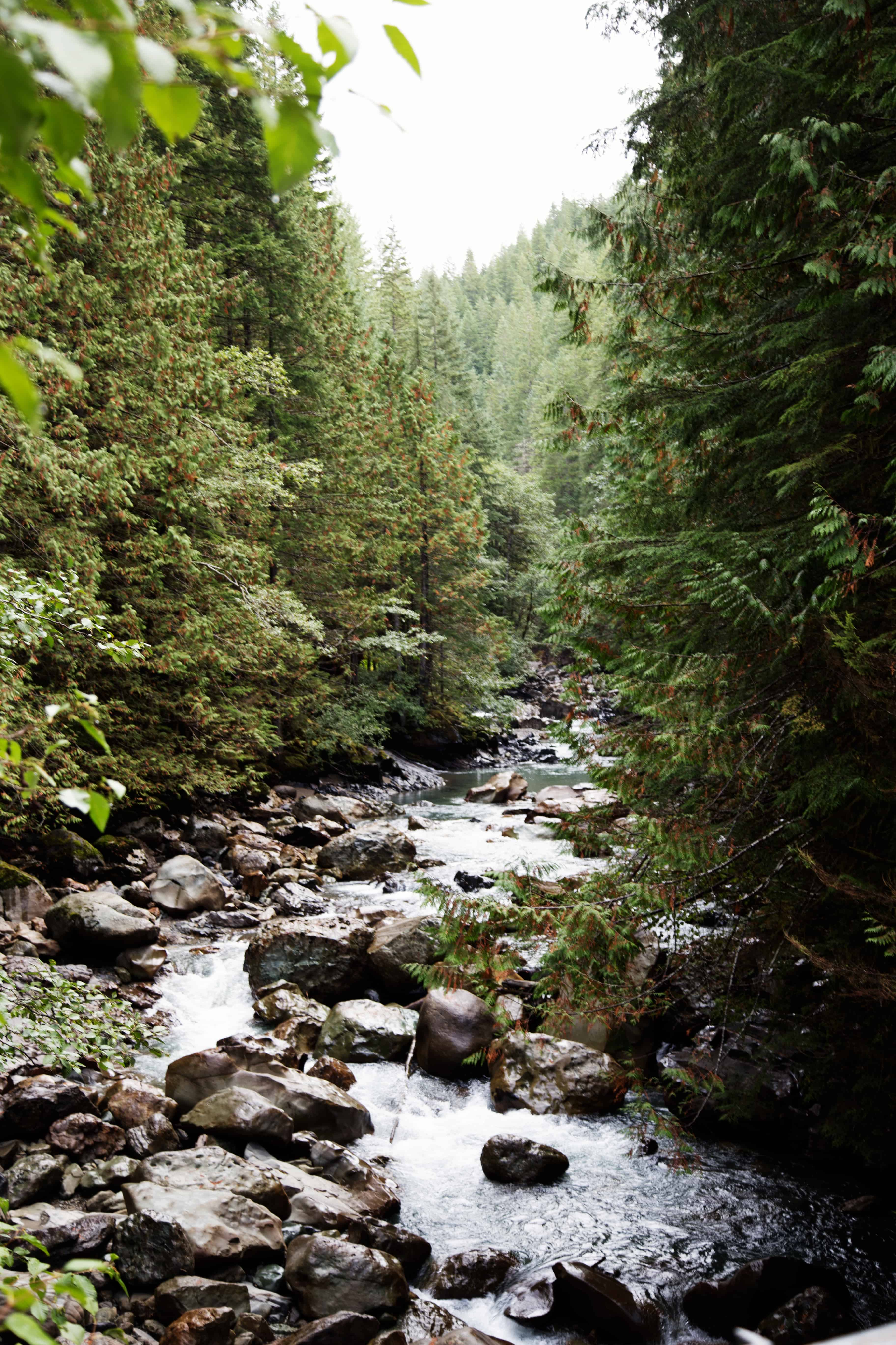 Nooksack Falls in the North Cascades National Park is an easy outdoor adventure in Glacier, WA that's a perfect day trip for all ages and abilities. Especially with these five tips for outdoor family adventures! North Cascades National Park   Nooksack Falls   Mount Baker