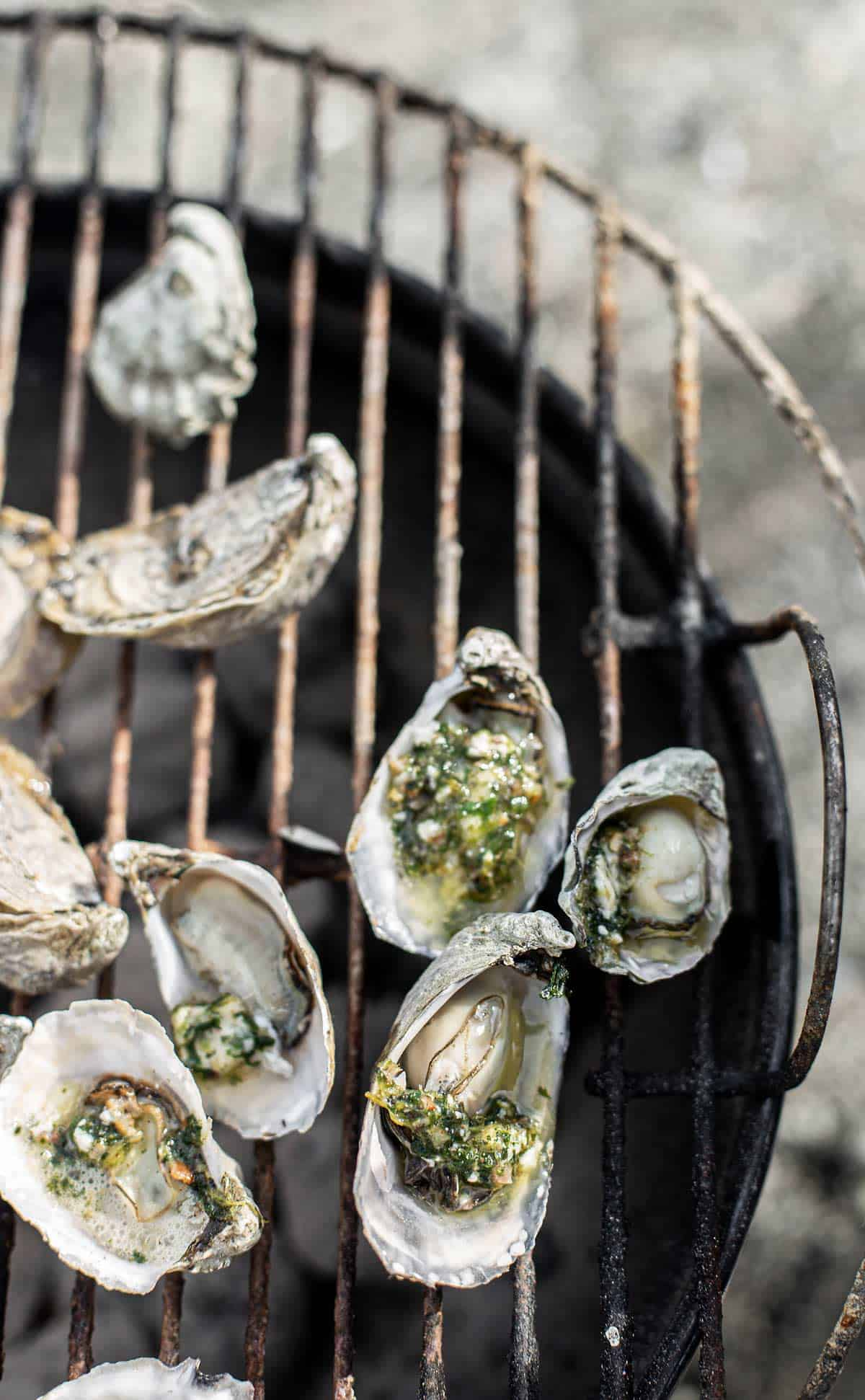Quick Grilled Oysters Rockefeller with bacon compound butter is the perfect recipe to host last minute guests or a date night at home!