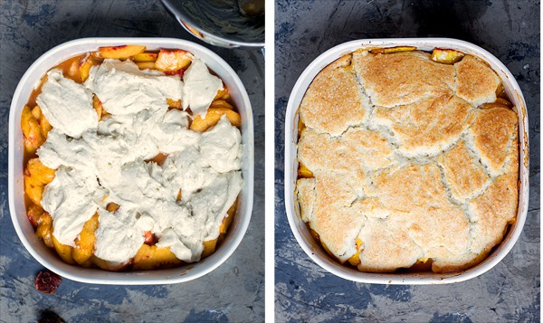Spiced Fresh Peach Cobbler with a fluffy, biscuit-like topping like grandma (and mom) used to make! peach cobbler recipe without oats, brown sugar, cornstarch | homemade bisquick topping | cake like cobbler topping like grandma #easy #cobbler #recipe