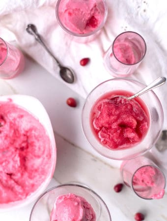 Cranberry Apple Cider sorbet and granita