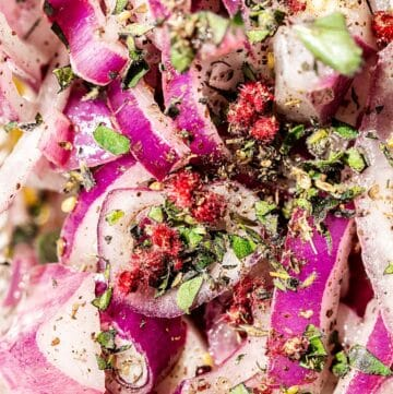 zoomed in macro shot of red onions, sumac pods and fresh herbs
