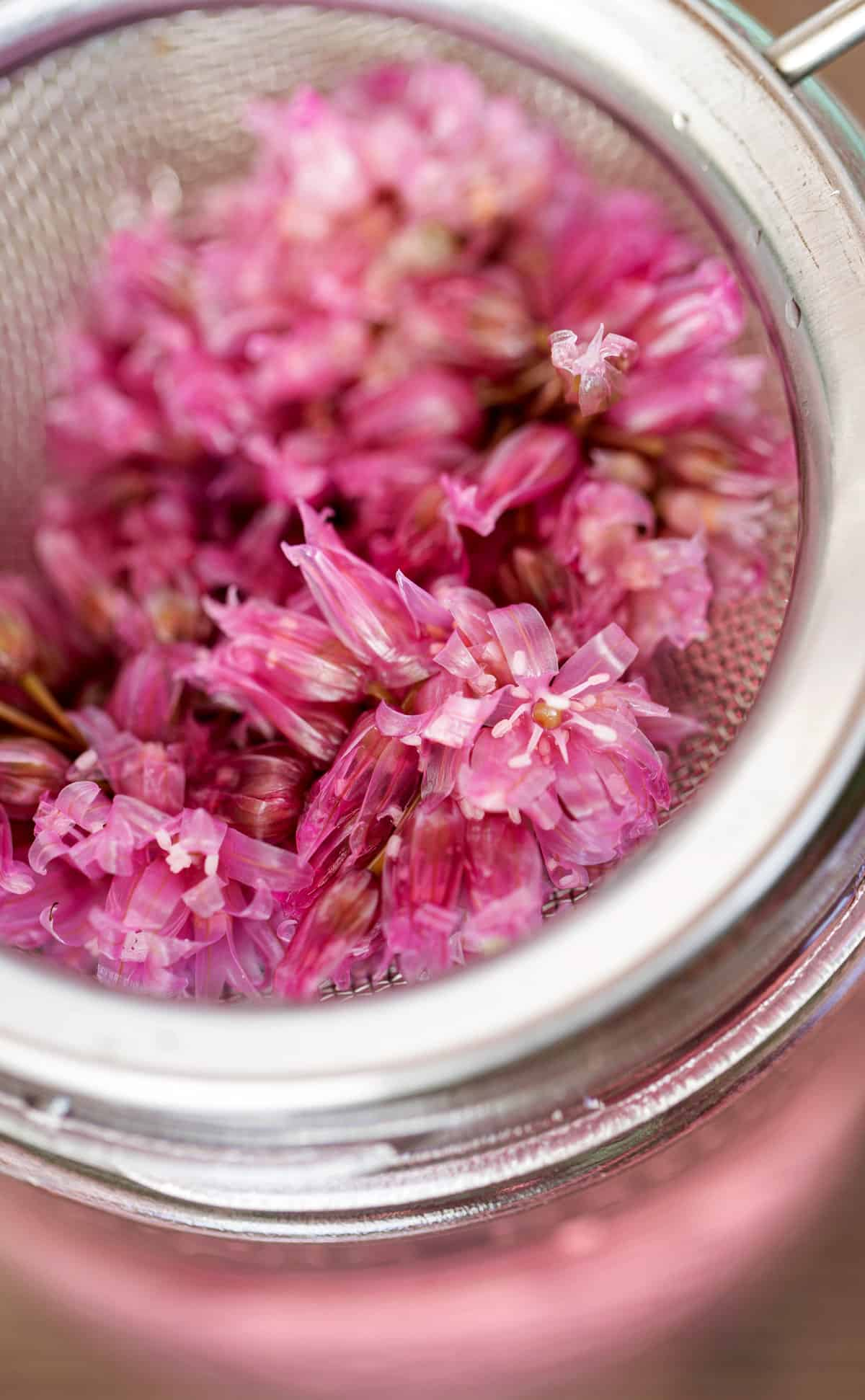 pickled chive blossoms after infusing vinegar